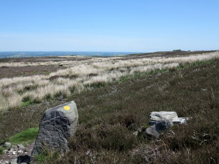 Stone with Waymark on Barningham Moor