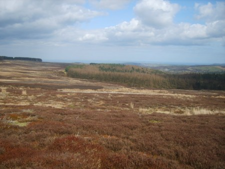 Looking towards the coast from Guisborough Moor