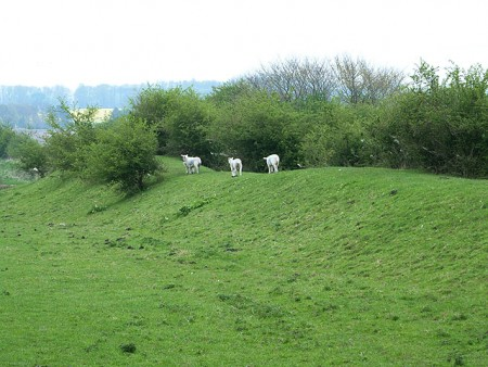 pekerjaan tanah pada Stanvick Iron Age kamp image